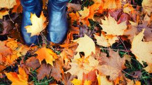 Razones para escaparte a Galicia en otoño.