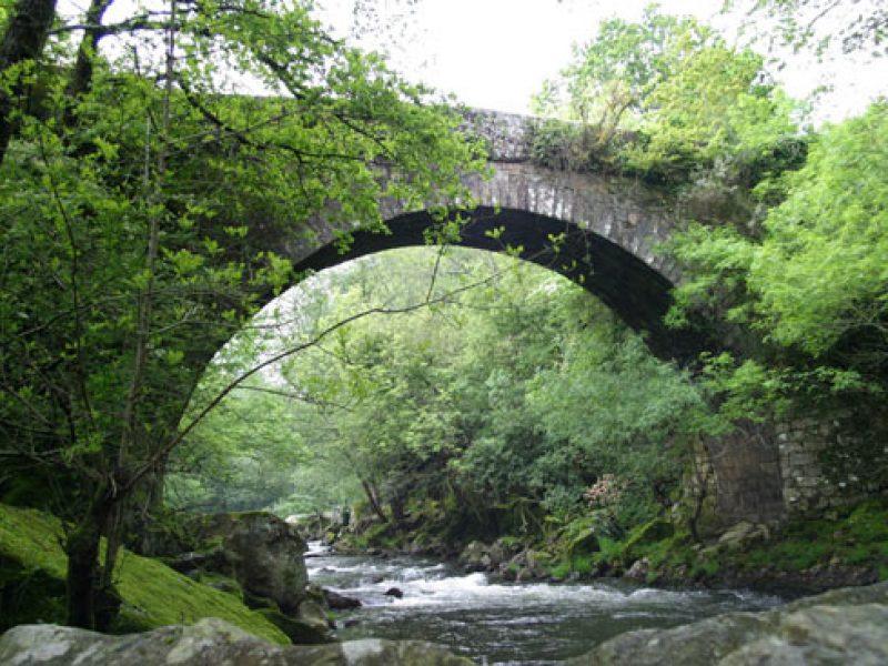 puente_segade
